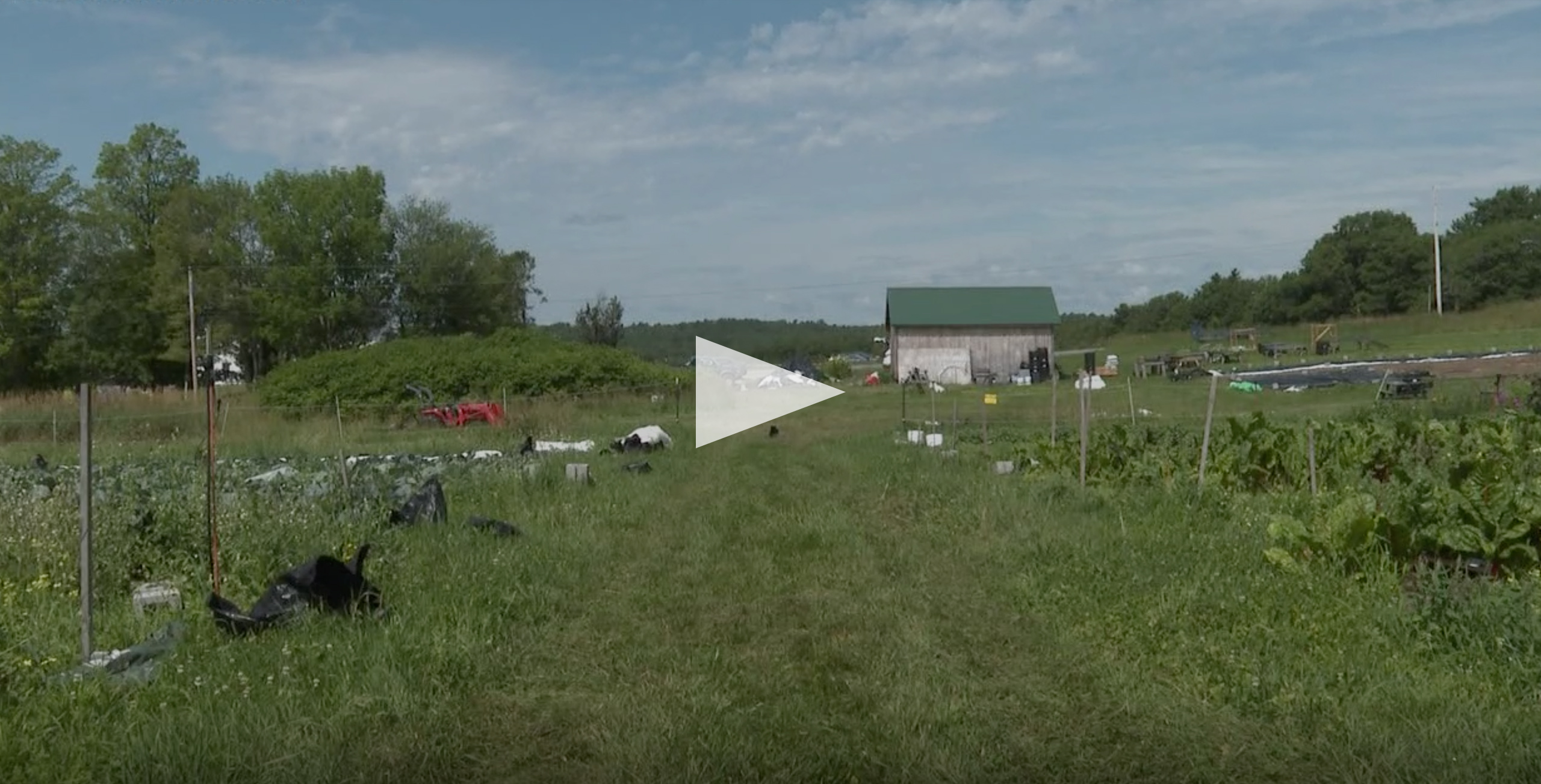 screenshot of farm from video